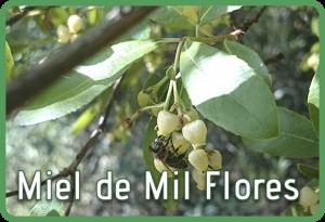 Miel de Mil Flores. Miel natural Selectmiel