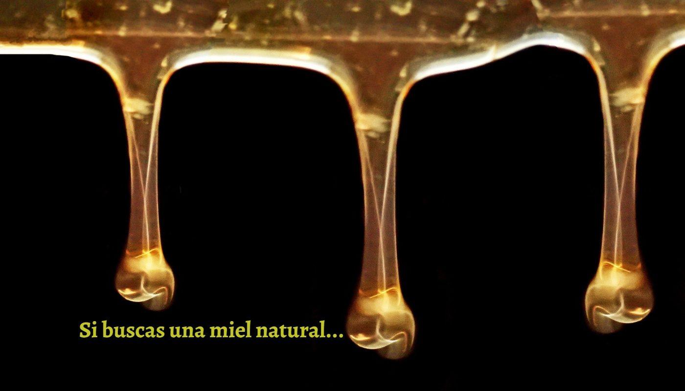 goteando-miel-natural